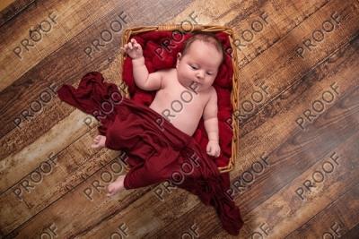Lydia's Newborn Session